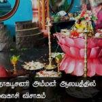 நயினை ஸ்ரீ நாகபூசணி அம்மன் ஆலயத்தில் நடைபெற்ற வைகாசி விசாகம்